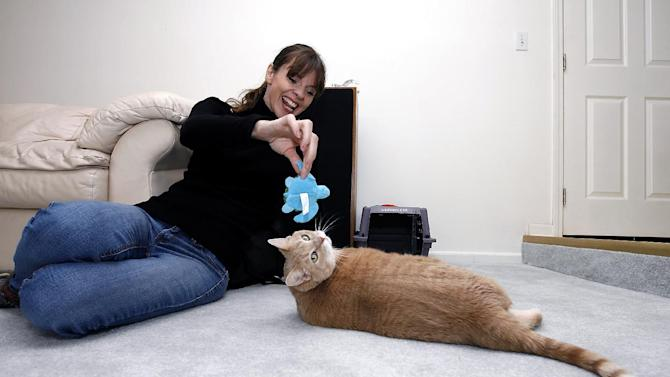 "IMAGE DISTRIBUTED FOR BANFIELD PET HOSPITAL - ANIMAL PLANET pet trainer Victoria Stilwell, plays with Danielle DeLozier's, cat Pooh during an in-home training session on Wednesday, Oct. 10, 2012 in Brownstown, Mich. DeLozier won Banfield Pet Hospital's Cat vs. Carrier ""inFURvention"" contest and received an in-home training session with Stilwell and free preventive care for a year from Banfield Pet Hospital. (Photo by Gary Malerba/Invision for Banfield Pet Hospital/AP Images)"
