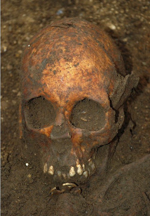 In this undated image made available by the University of Cambridge in England early Friday, March 16, 2012,  showing a buried skull.  Archaeologists excavating near Cambridge have stumbled upon a rar