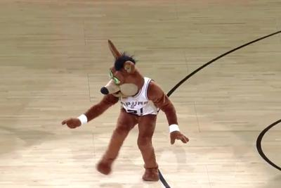 Drake's 'Hotline Bling' dance, as performed by the Spurs' creepy, wild-eyed coyote mascot