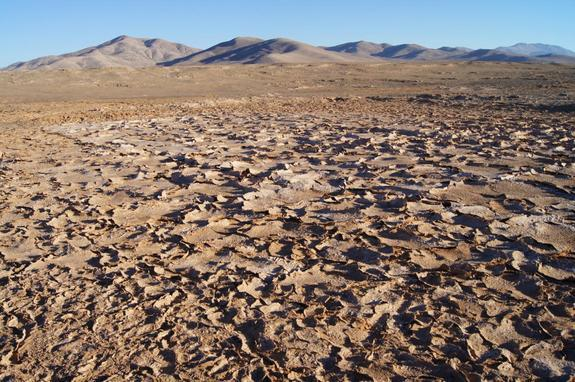 Rover Explores Chile Desert to Aid Mars Life Hunt