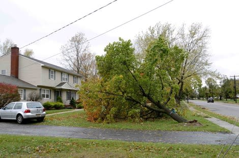 Hurricane Sandy Storms Through Freehold Township, NJ (pictures)