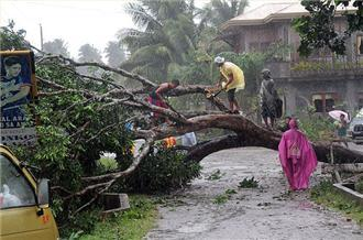 Typhoon Bopha kills dozens in the Philippines