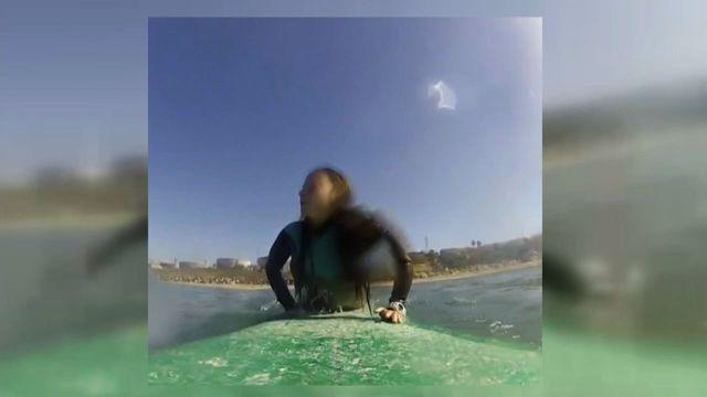 Surfer gets up close and personal with a shark