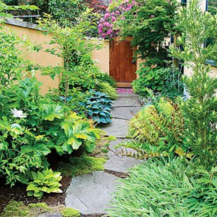 Soothing garden escape
