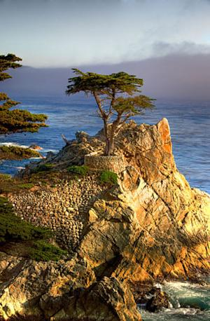 Who Owns Pebble Beach? Fan's Look