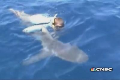 Fisherman saves deadly bull shark