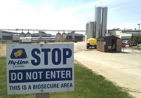 Exclusive: Iowa bird-flu farms fall short on containment measures