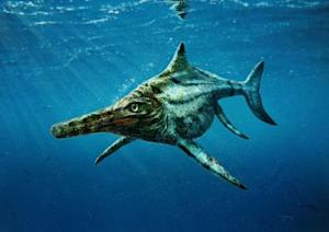 The newly identified prehistoric marine reptile Dearcmhara shawcrossi, a member of a group called ichthyosaurs