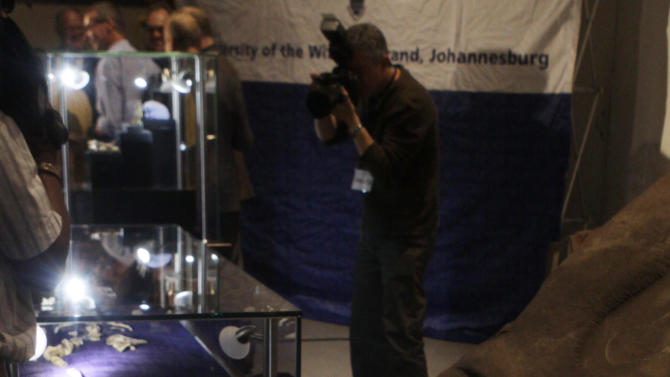 One of two sets of bones from Australopithecus Sediba, found in South Africa are unveiled at the University of the Witwatersrand in Johannesburg, Thursday, Sept. 8, 2011. The bones offer the most powerful case so far in identifying the transitional figure that came before modern humans, finding some are calling a potential game-changer in understanding evolution. (AP Photo/Denis Farrell)