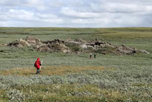 A scientist walks near a mysterious crater in the permafrost …