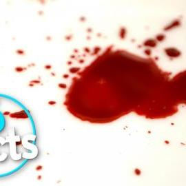 Top 5 Facts about Blood