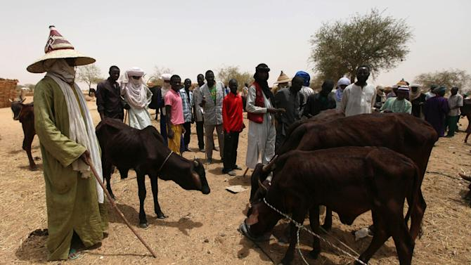 FILE - In this May 12, 2010 file photo, nomads look on as hungry cattle are fed in a local market in Dakoro, Niger. Six aid group employees were abducted from the guesthouse where they were sleeping in a central Niger town, an eyewitness and the provincial governor said Monday, Oct. 15, 2012. Men in two Toyota pickup trucks pulled up to the guesthouse in the town of Dakoro late Sunday and seized five Nigeriens and a worker from Chad, said Sidi Mohamed, the governor of the Maradi region. (AP Photo/Sunday Alamba, File)