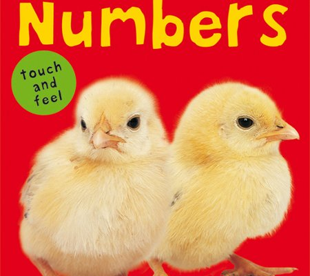 Bright Baby Bilingual Touch &amp; Feel: Numbers