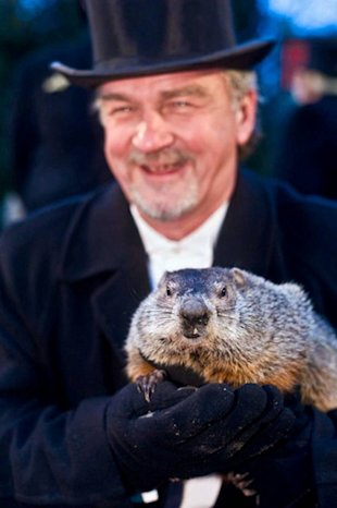 Groundhog handler John Griffiths carries Phil at the 2010 Groundhog Day event in Punxsutawney, PA.