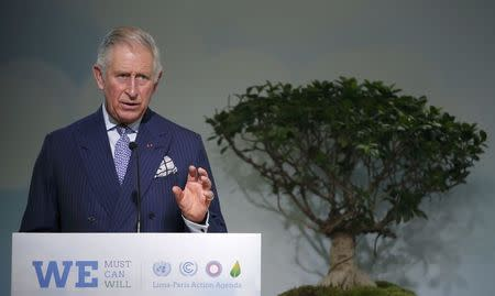 Protecting forests must become the norm in supply chains: Prince Charles