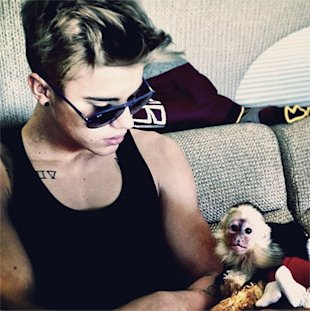 Justin Bieber and his pet monkey