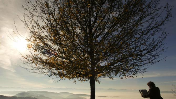 A man reads a newspaper under a tree during sunny autumn weather on Mount Uetliberg in Zurich