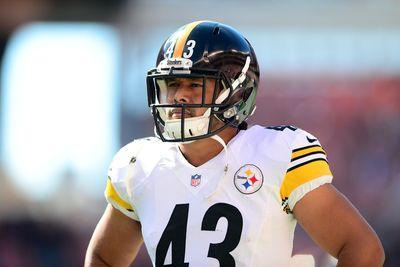 Steelers are hoping Troy Polamalu will retire, according to report