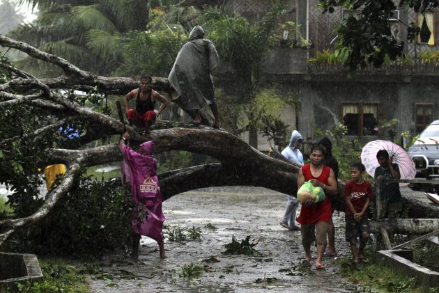 Residents saw an uprooted tree to clear the road after Typhoon Bopha hit Tagum City, southern Philippines December 4, 2012. Typhoon Bopha made landfall in southern Philippines early Tuesday, bringing heavy rains and strong winds, forcing 41,600 people living in coastal areas to flee their homes.  REUTERS/Stringer (PHILIPPINES - Tags: DISASTER ENVIRONMENT SOCIETY)