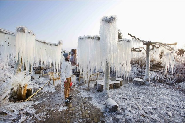 Thijs Glas admires icicles on frozen branches in the private area of the nursery garden in Heerhugowaard