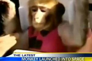 Iran Says It Launched a Second Monkey Into Space (Video)