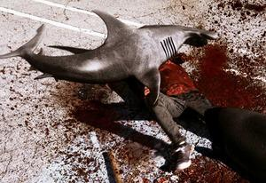 Sharknado | Photo Credits: Syfy