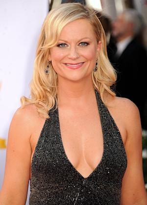 Whoa! Newly Single Amy Poehler Flashes Cleavage on First Red Carpet Post-Split at 2012 Emmys