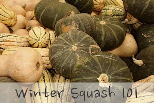 Winter Squash 101: Acorn, Kabocha and Butternut Squash