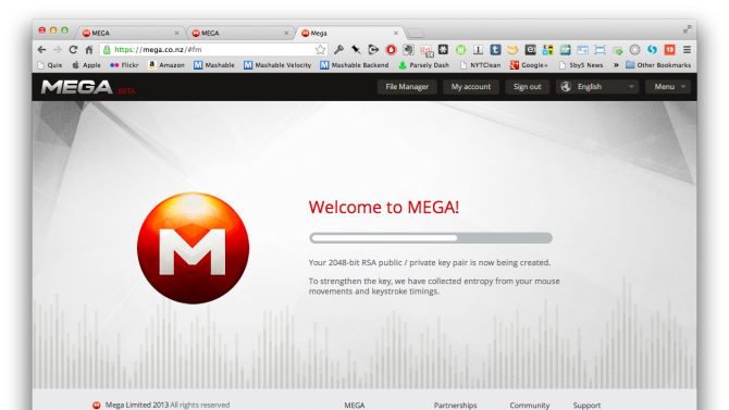 Everything You Need to Know About Kim Dotcom's Mega
