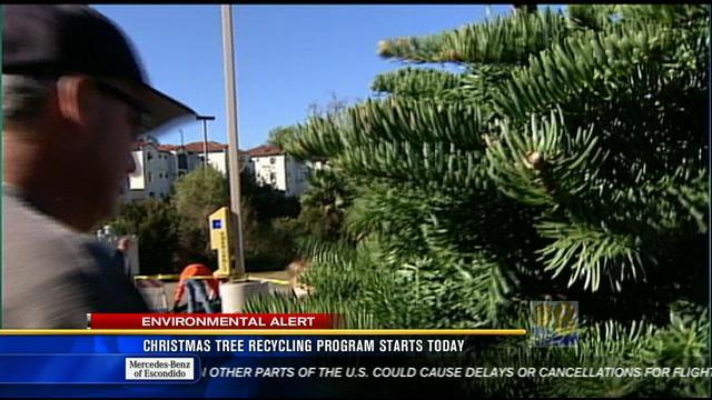 Christmas tree recycling program starts Wednesday