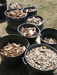 Trash cans full of bones collected from the Corinth theater.