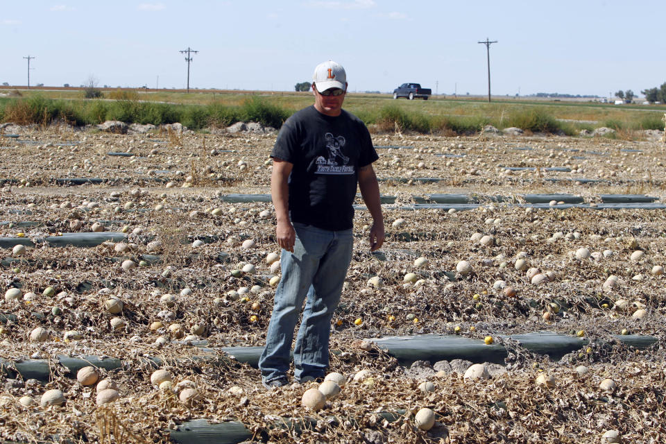 Eric Jensen walks a field with rotting cantaloupes on the Jensen Farms near Holly, Colo., on Wednesday, Sept. 28, 2011. Eric and his brother Ryan own Jensen Farms that has been identified as the source of the national listeria outbreak that has killed more than a dozen people so far. (AP Photo/Ed Andrieski)