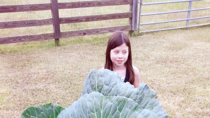 In this undated handout photo released by Bonnie Plants, Baylen Wasden, winner of the Bonnie Plants Cabbage Program for the State of Georgia in 2011, is seen. If you think it's hard getting kids to eat their vegetables, wait until you try recruiting them for garden work. But the challenge is worth it, since children might be more likely to add healthy foods to their diet after growing them. (AP Photo/Bonnie Plants)