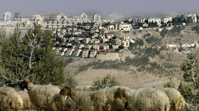 File - In this Aug. 25, 2005 file photo, sheep graze in front of Maaleh Adumim, the largest Jewish settlement in the West Bank, five miles (8 kilometers) east of Jerusalem. Israel's Housing Ministry said Tuesday, Nov. 12, 2013, it is exploring potential construction of thousands of new homes in West Bank settlements in the coming years. The announcement threatened to deal a new blow to U.S.-brokered Mideast peace efforts, which have run into trouble over Israeli settlement construction on occupied lands claimed by the Palestinians. (AP Photo/Baz Ratner, File)