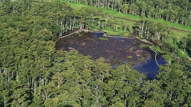 Mysterious Louisiana Sinkhole Raises Concerns of Explosions and Radiation