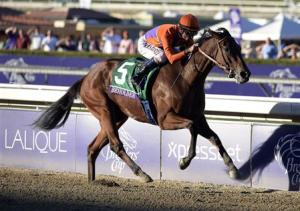 Horse Racing: 30th Breeders Cup World Championships