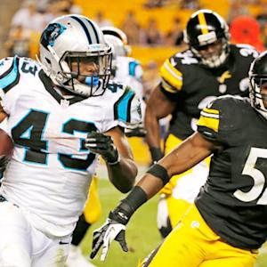 Panthers vs Steelers preseason highlights