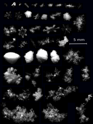 Cameras Capture Falling Snowflakes in 3D