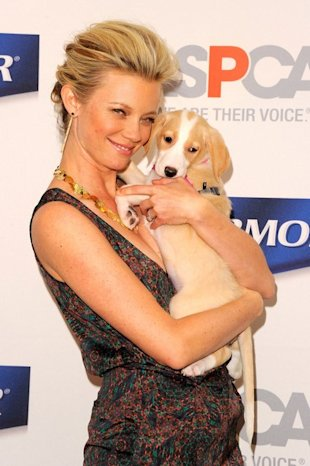amy smart and puppy