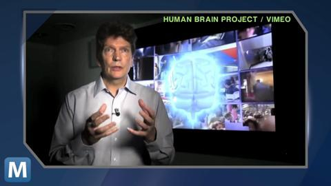 What's in a Mind? Science's Plan to Model the Human Brain