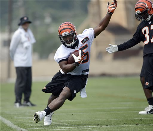 In this May 21, 2013, file photo, Cincinnati Bengals rookie running back Giovani Bernard carries the ball during an NFL football practice at Paul Brown Stadium in Cincinnati, Ohio. The Bengals have si