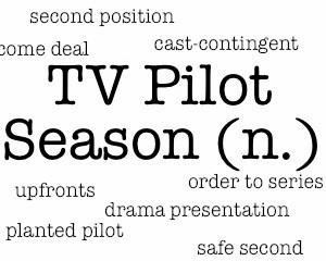 Pilot Season 2014: Scoop on This Fall's (Possible) New Shows and Who's Starring In Them