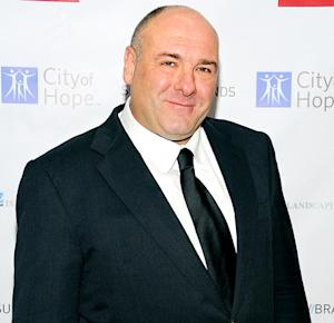 James Gandolfini Dead: Details on His Shocking Death, Final Day