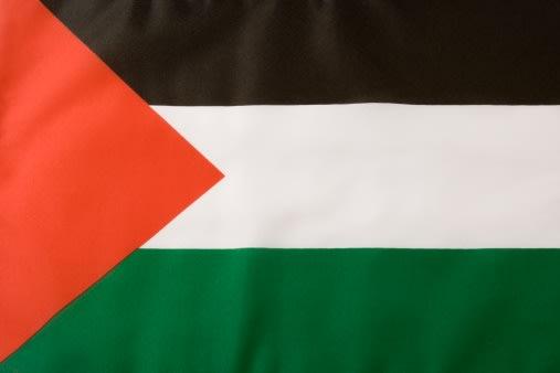 معاني أعلام البلدان العربية 2d8f9d6a-8ccb-4216-8d92-d7c307c47a41_palestine