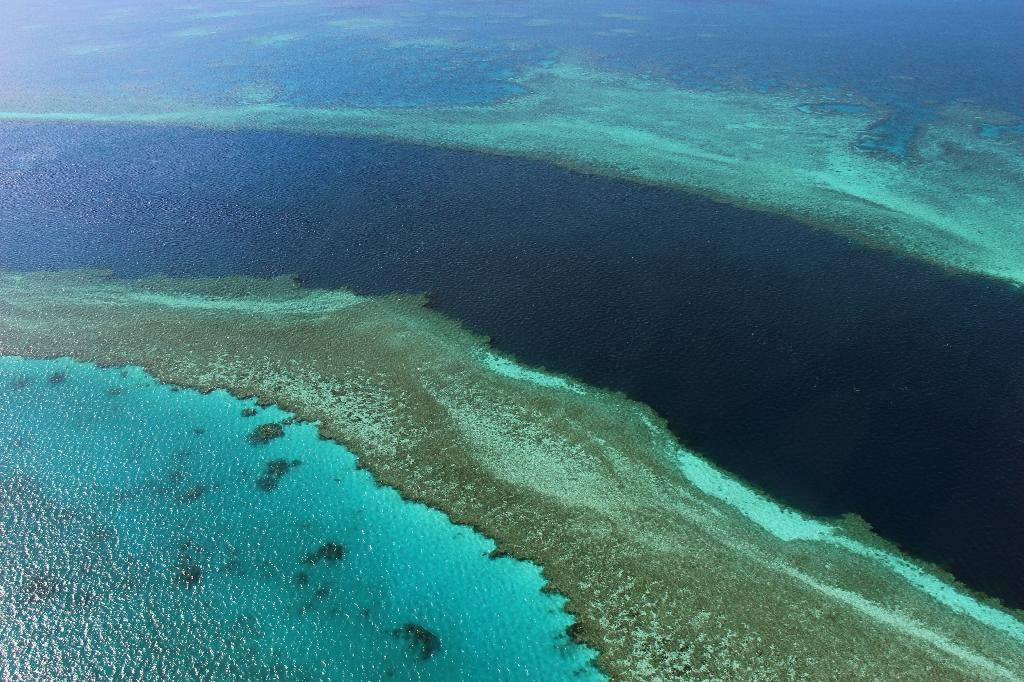 Australia welcomes UN call on Great Barrier Reef