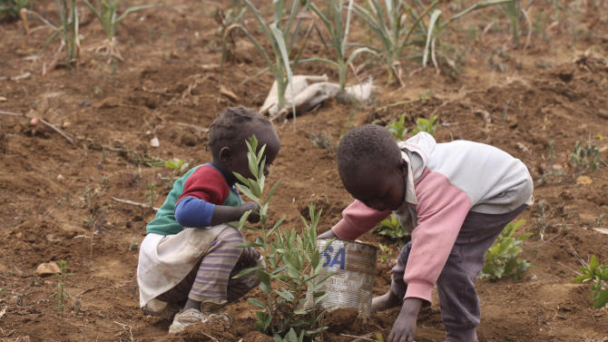FILE - In this Monday, Aug. 17, 2009 file photo, children salvage the remains of a failed potato field at a farm in the Laikipia District, of Kenya, some 200 kilometers (120 miles) north of the capital Nairobi, in the wake of a prolonged drought which wiped out harvests throughout the country. While sea level rise threatens some coastal communities in Africa, the continent faces even bigger climate-related problems inland. Climate scientists have projected shifts in rainfall patterns leading to extended droughts in some areas and increased flooding in other parts. (AP Photo/Khalil Senosi, File)