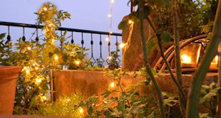 Twinkling_fairy_lights_in_balcony_plants_ambient_lighting_accent_night_garden_design_idea
