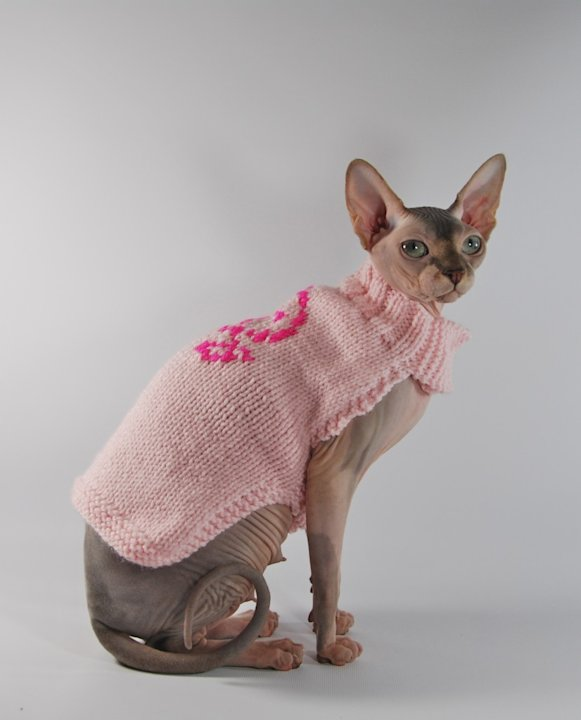Cozy Sphinx Sweater