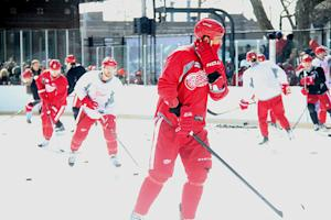Detroit Red Wings' Top 5 Questions Down the Stretch