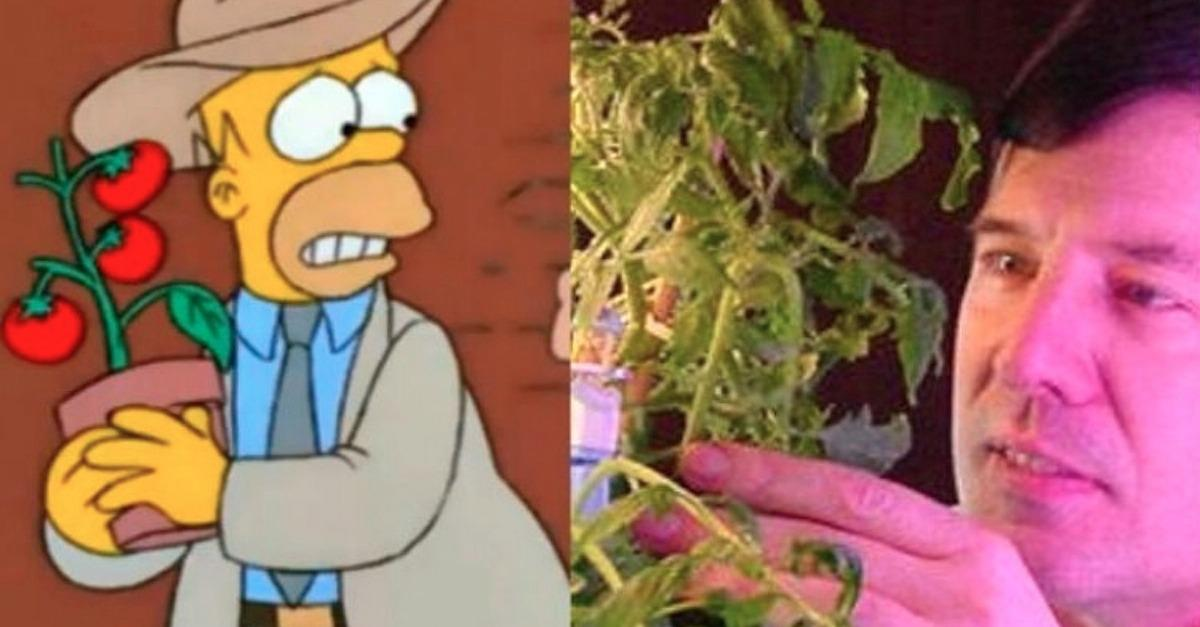 "16 ""Simpsons"" Jokes That Happened In Real Life!"